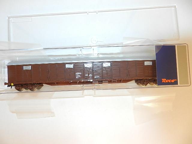 DSCN1323